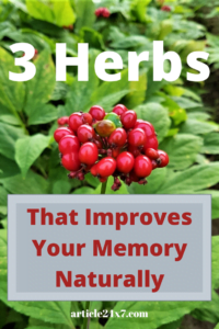 3 Herbs That Improve Your Memory Naturally